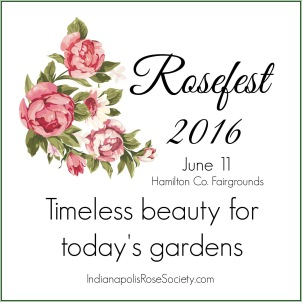 Rosefest 2016