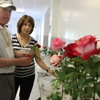 Mark & Cathy Nolan at getting their roses ready at Rosefest